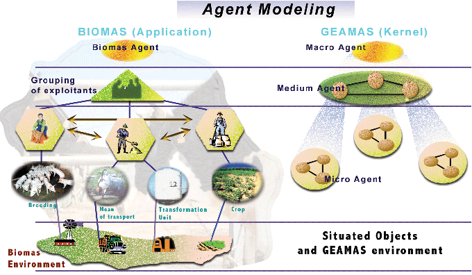 biomas geamas correspondance